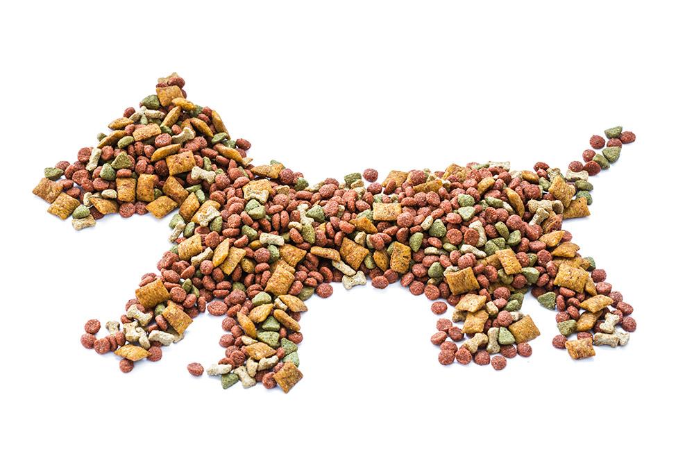 Dog food concept